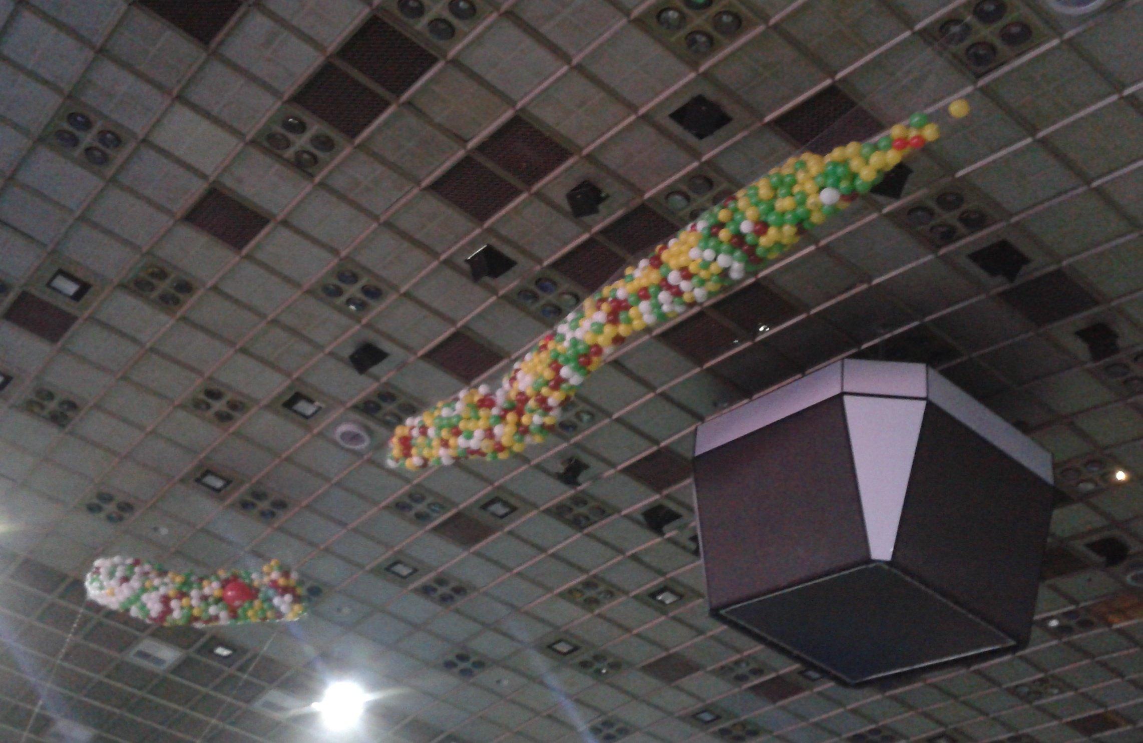 Воздушные шары Киев в сетке